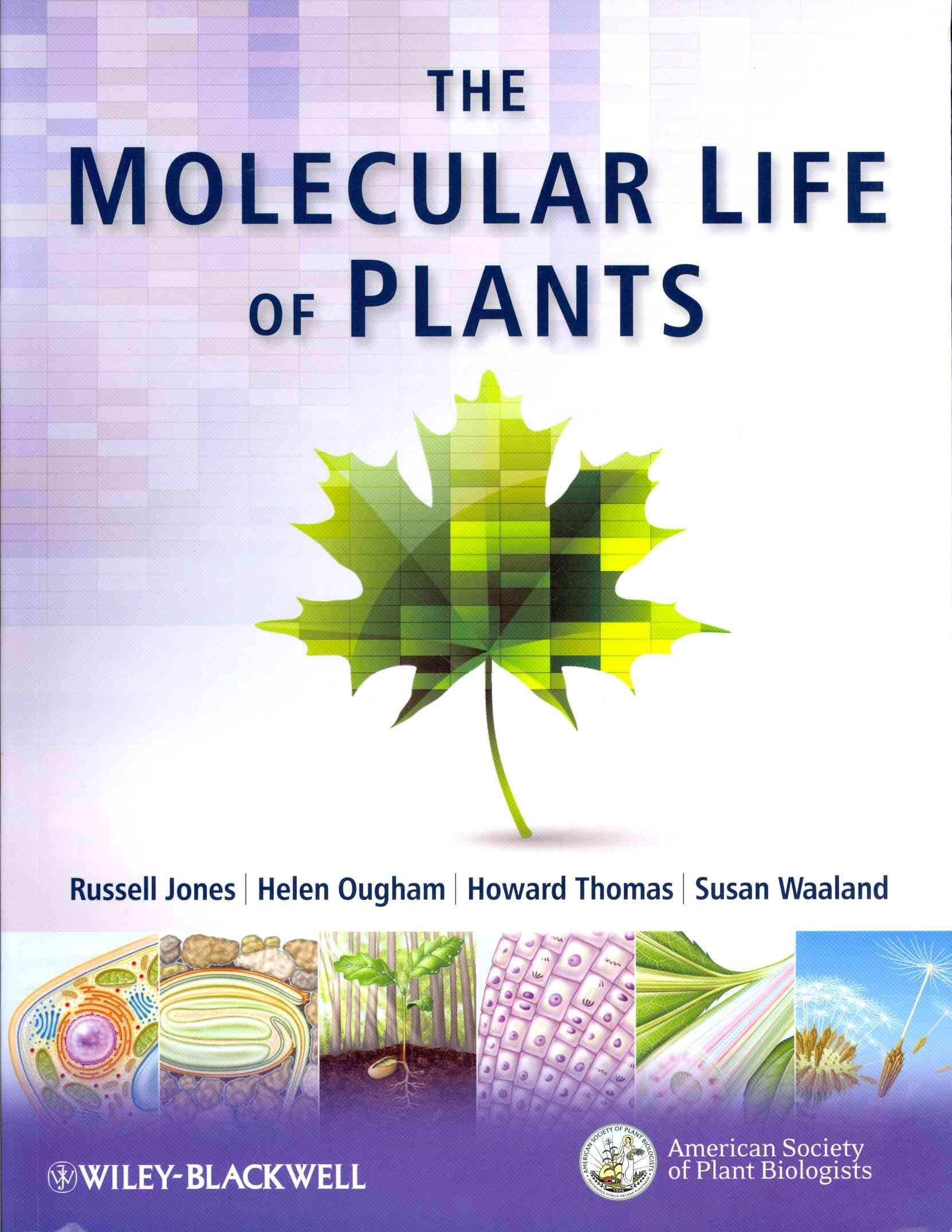 The Molecular Life of Plants By Jones, Russell/ Thomas, Howard/ Ougham, Helen/ Waaland, Susan
