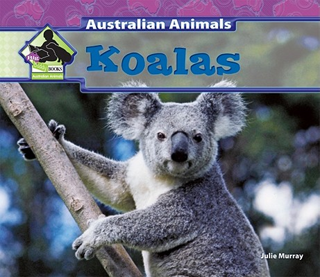 Koalas By Murray, Julie